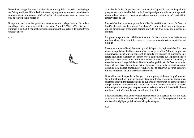 http://www.juliensalle.net/files/gimgs/11_07-variable-cataclysmique7.jpg
